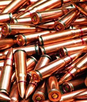 Army seeking biodegradable bullets