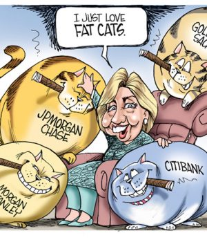 Hillary's Pets