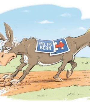 Democrats on the path to victory