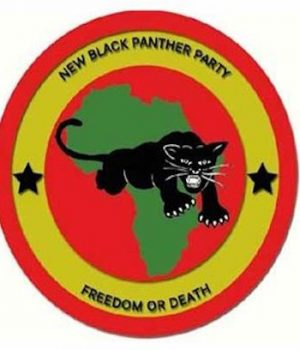 Black Panthers ask Mamou, LA city council for permit for armed march