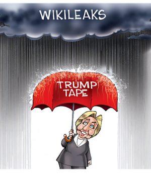 Hillary's Shelter
