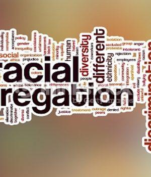 Education: Diversity through segregation?