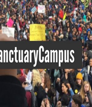 U of Illinois won't be designated 'sanctuary' for immigrants