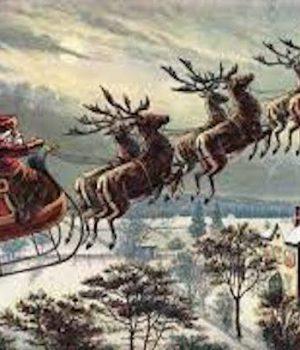 University: Avoid Santa, Reindeer & Christmas Tree Sugar Cookies