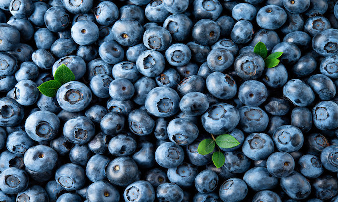 City: You Can't Sell Blueberries Unless You Affirm Gay Marriage