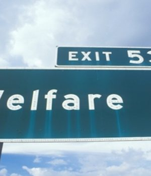 CIS: 51% of immigrants in US on welfare