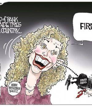 Democrats own it