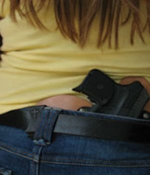 Report: Concealed-carry permits increasing as gun sales level off