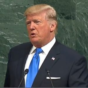 Brian Williams: Was Trump's repeated use of 'sovereignty' during UN speech a 'dog whistle?'
