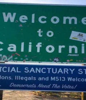 Trump threatens to pull ICE, leave 'sanctuary state' of California on its own