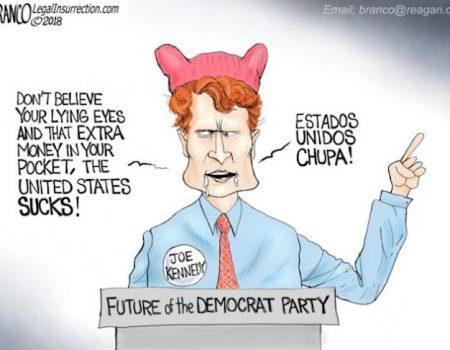 Rich, White, Male Democrat Spokesman