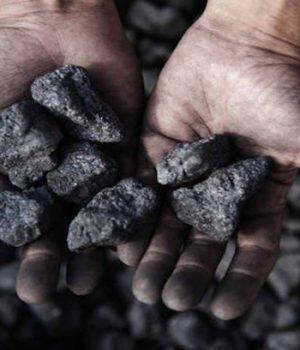 Trump's European climate change critics fuel U.S. coal boom
