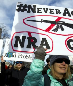 Do these protesters know what an 'assault' weapon is?  You get one guess.