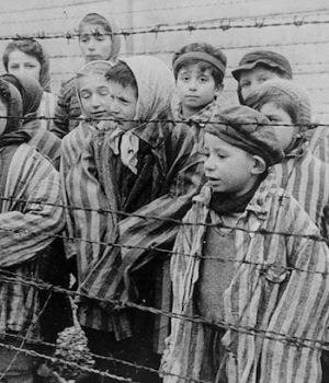 Many Americans, millennials ignorant of the Holocaust, survey finds
