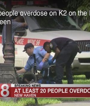 New Haven, Conn., sees over 30 synthetic marijuana overdoses on one day