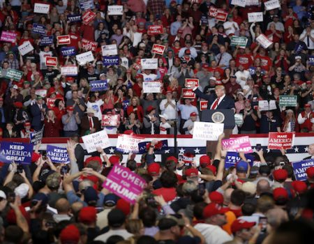 Vote: Trump implores midterm elections voters to protect GOP gains, 'stop the radical resistance'