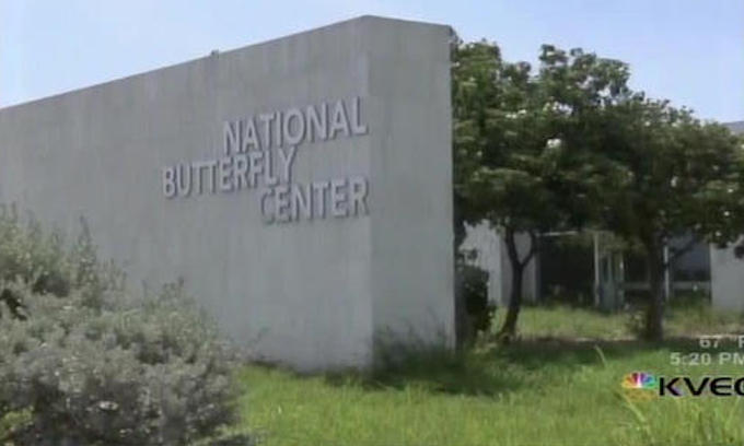 Open Border Advocates Use Butterflies and Birds as Excuse to Stop Border Security