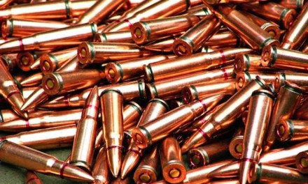 California wants background checks for ammo