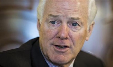 Trump supports Cornyn background check that requires federal agencies to report