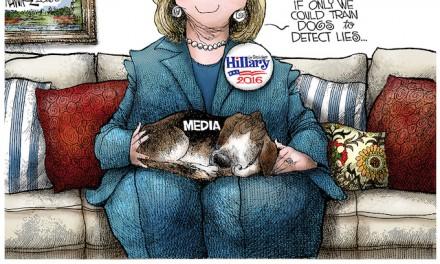 Media for Hillary