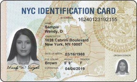 Wary of Trump Plans to Deport Alien Criminals, NYC May Erase Municipal ID Card Data