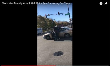 Chicago Thugs Beat Trump Supporter