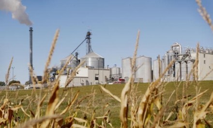 The ethanol debate: A fuelish plug