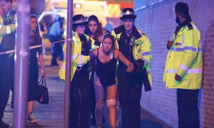 UK terror 'network' takes shape