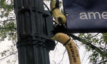 Bananas Lynched on College Campus