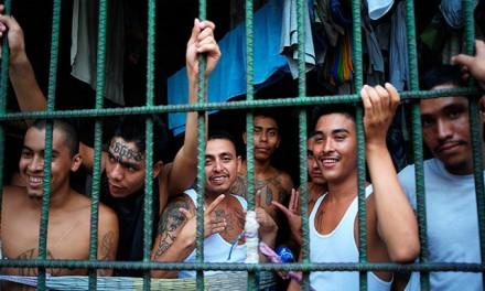 30% of Illegal Alien Minors Have Gang Ties