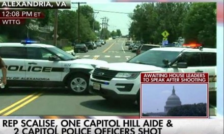 Raw Story editor, says Steve Scalise 'deserves a Darwin award' for being shot