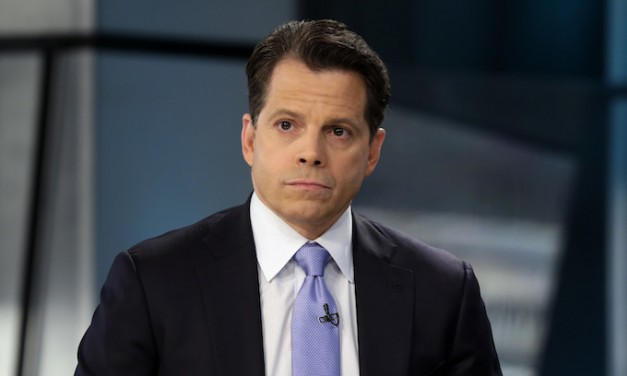 Anthony Scaramucci to suspected leaker Michael Short: You're fired