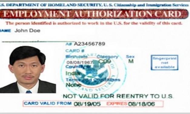 Illegal aliens get 2 million work permits in 2017