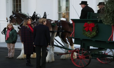 Melania Trump, Barron receive Christmas tree