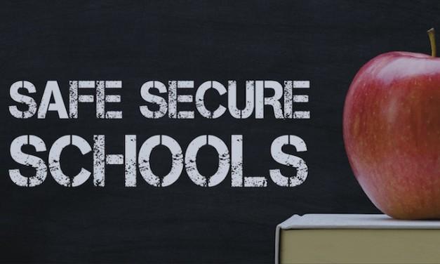 FL Gov. lays out plan to address safety in schools, gun ownership under 21