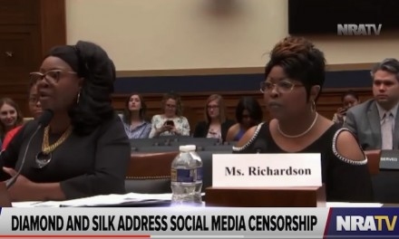 Democrat Hank Johnson takes on Diamond & Silk