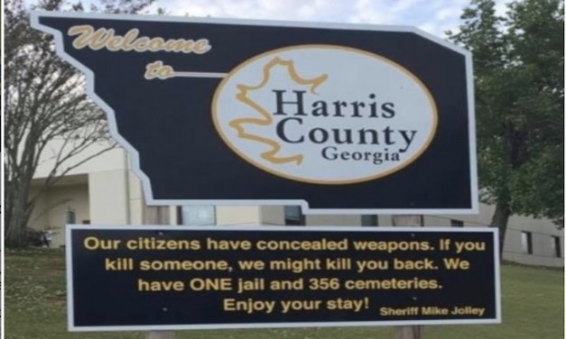 'If you kill someone, we might kill you back' – GA sheriff's welcome sign goes viral