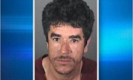 Illegal alien arrested for attacking wife with chainsaw was deported 11 times