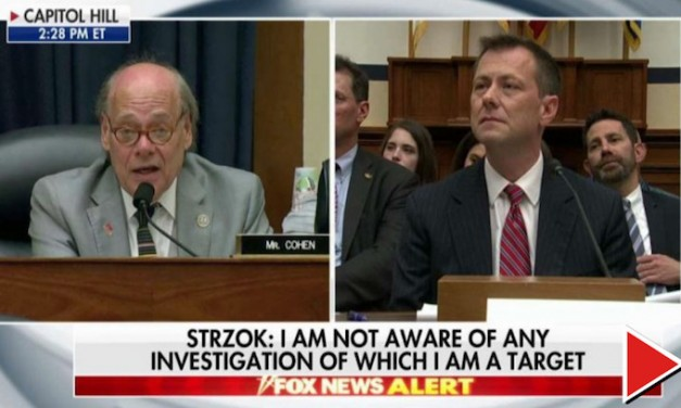 The Democrat who wants to give Peter Strzok a purple heart