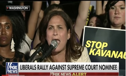 Fox News Host Cancels Live Coverage of Supreme Court Protest: 'I Felt Threatened'