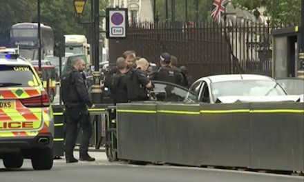 UK police treat Parliament crash as terrorism, man arrested