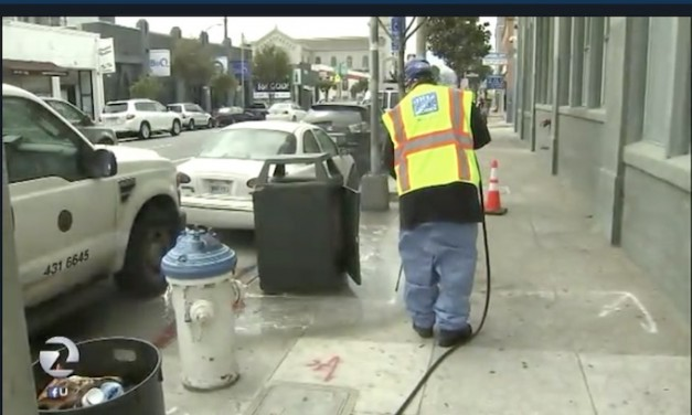 San Francisco forms a poop patrol