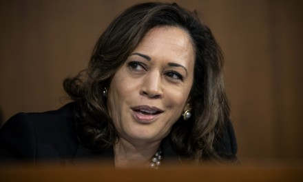 Kamala Harris draws comparison between ICE and KKK
