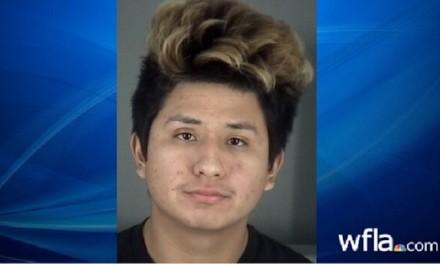 Man accused of video-game rape is illegal alien