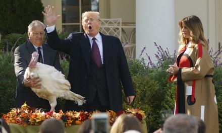 Trump pardons turkeys, skewers Democrats