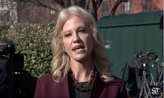 Kellyanne Conway takes rude Jim Acosta down a notch or two
