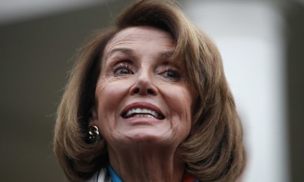 Pelosi vows never to give up on gun control