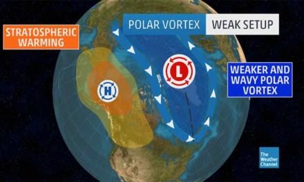 Michael Bloomberg blames Midwest polar vortex on global warming