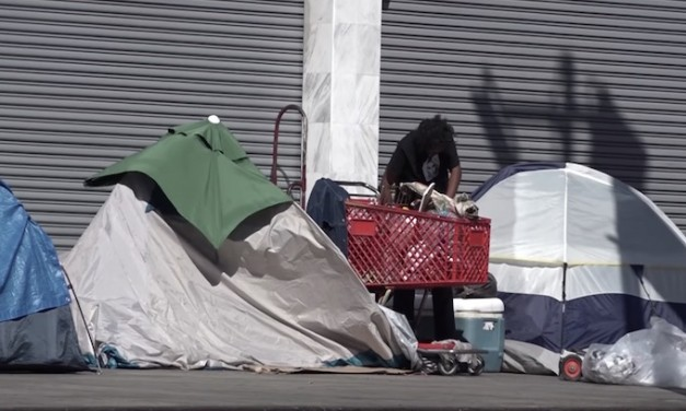 Typhus Epidemic Worsens in Los Angeles