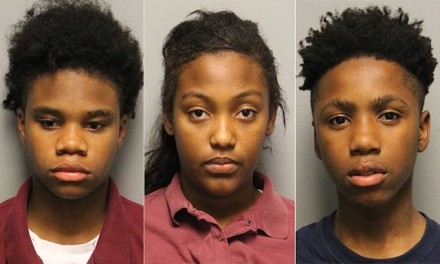 Three girls, two boys ages 12-16 charged in murder of musician from central Pa.